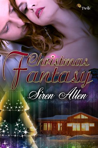 Christmas Fantasy333